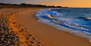 counseling-wellness-spirituality-beach-shoreline-water-environment